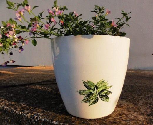 Пластиковый цветочный горшок (Plastic flower pot) ©  John Bonham